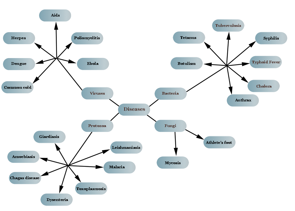 Concept Map Bacteria.Biology Concept Map Diseases And Pathogens